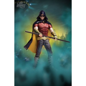 Batman Arkham City Action Figure Series.1: Robin